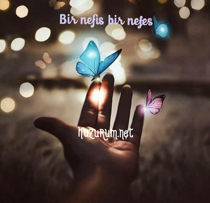 BİR NEFİS BİR NEFES